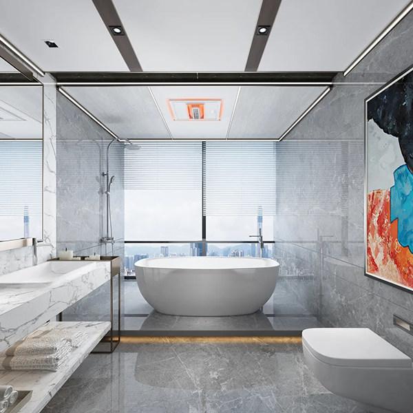 奥华御尊1号·浴室暖空调