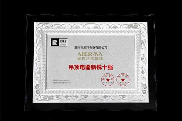 """爱玛2021年金瑞奖""""吊顶电器新锐十强""""奖牌"""